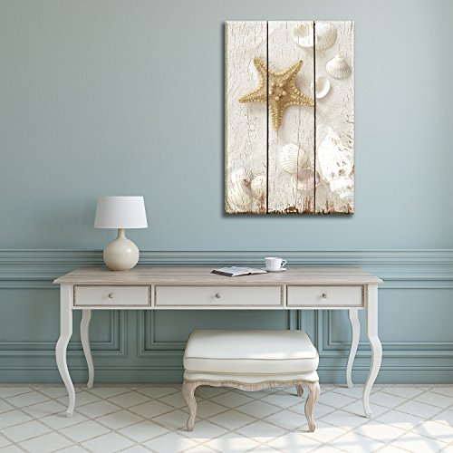 Star Fish and Sea Shells on the Sand Over White Wooden Panels Nature