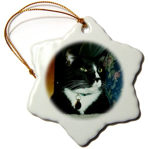 3dRose ORN_156012_1 Black Tuxedo Cat Sitting Down Snowflake Ornament, Porcelain, 3-Inch