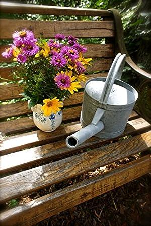 3,6 L Fleurs-Arrosoir zinkkanne Arrosoir en zinc pour le jardin