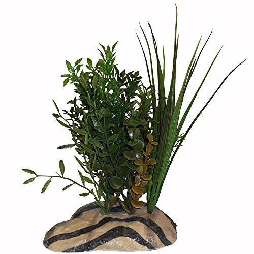 Rock Garden 8'' Natural Green Plant with Decorative Resin Base, Large by Rock Garden