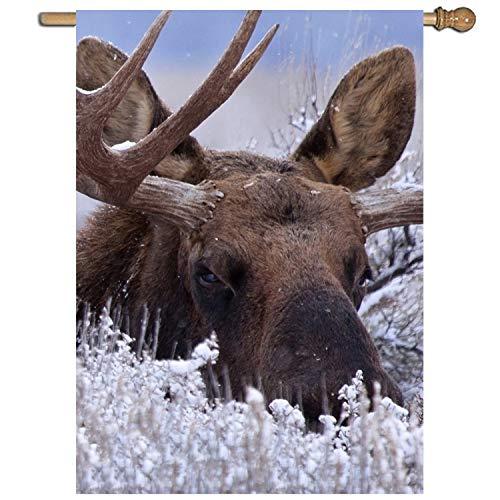 Light Up Outdoor Moose
