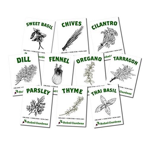 Herb Garden - Organic Herb Seeds - Non GMO, Heirloom, Non Hybrid - 10 Culinary Varieties Including Basil, Cilantro