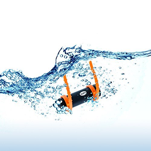 GEARONIC TM 4GB Waterproof Water MP3 Music Player FM Radio Earphone For Underwater Sport Swimming Diving -