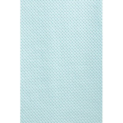 13'' x 19'' Patient Bibs - Dental Econo-Gard Color: Blue by Graham Field