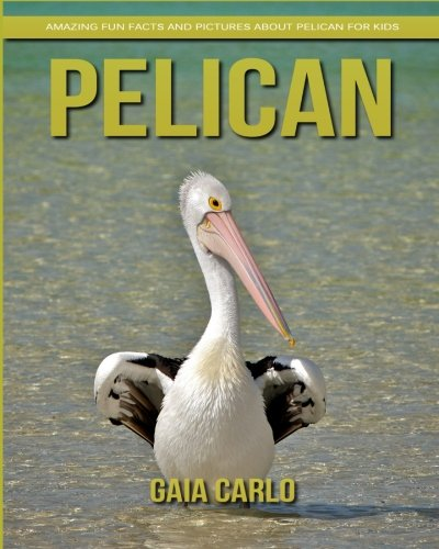 Pelican: Amazing Fun Facts and Pictures about Pelican for Kids