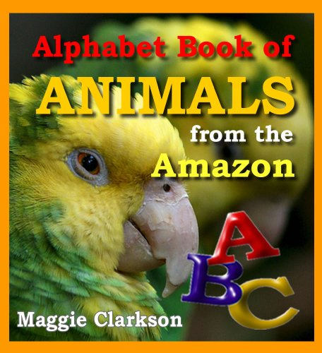 Alphabet Book Of Animals: A Kids Book About Rainforest Animals – Rainforest Photo Books For Kids (Animal Alphabet Books 4)