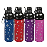 24 Ounce Stainless Steel Water Bottles For Dogs Your Dog On Walks