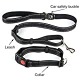 PROMUN Pet Multifunction Vehicle Safety Harness, Dog Lead/Training Leash with 31-47 Inch Adjustable Collar, Dog Car Seat Belt, Traction Rope, Suitable for Medium and Large Dogs (Black)