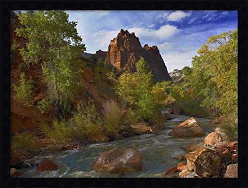 Canvas Art Framed 'Mt Spry at 5,823 Foot Elevation with The Virgin River Surrounded by Cottonwood Trees, Zion National Park, Utah' by Tim ()
