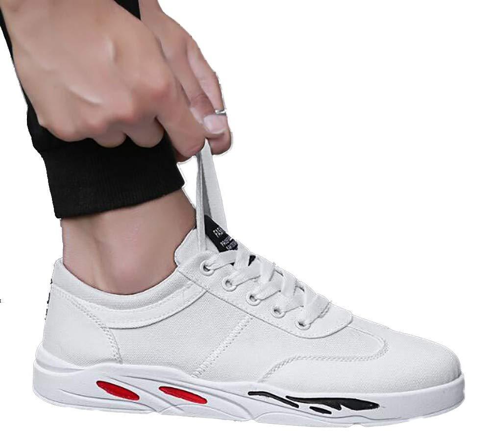 LIGYM männer lässige Schuhe, leinwand, Schuhe