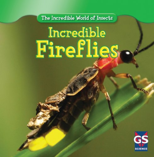 Incredible Fireflies (The Incredible World of -