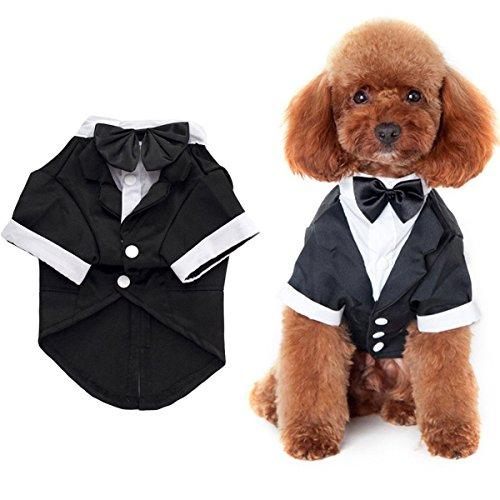 07aff9bd363a7 ANSIMITE 蝶ネクタイがめちゃキュート 犬 猫 服 タキシード 燕尾服 黒リボン 小型 中型 大型
