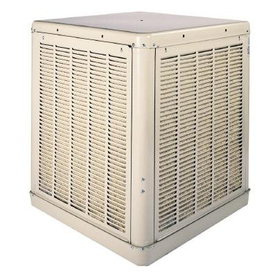 Champion Cooler 3000 Dd Cabinet Evaporative Cooler, 3000-Cfm Evaporative (Swamp) Cooler
