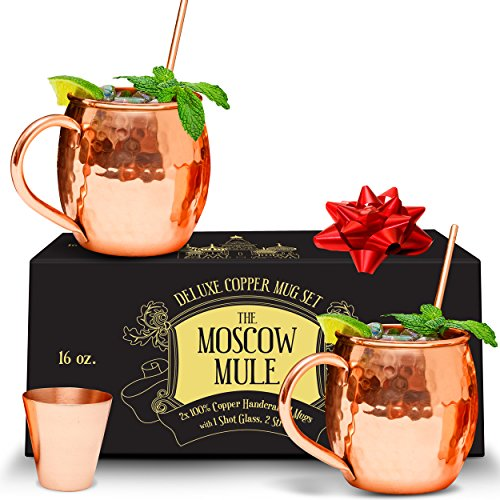 Benicci Moscow Mule Copper Mugs - 100% HANDCRAFTED - Food Safe Pure Solid Unlined Copper Mug 16 oz Gift Set with BONUS: Highest Quality Cocktail Copper Straws, Shot Glass and Spoon (Set of 2)