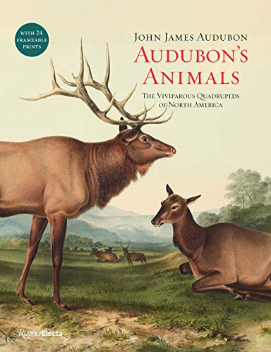 Audubons Animals: The Viviparous Quadrupeds of North America John James Audubon