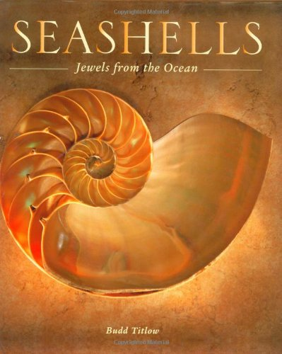 Seashell Post (Seashells: Jewels from the Ocean)
