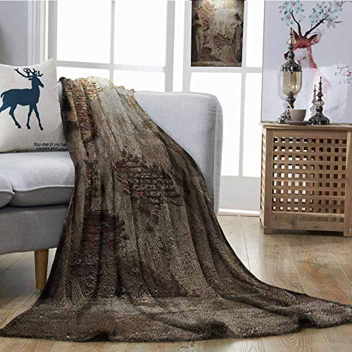 Microfiber All Season Blanket Sculptures Decor Collection Antique Women Sculptures on Concrete Cement Wall Damaged History Interior Style Print Summer Quilt Comforter W54 xL72 Ivory Beige