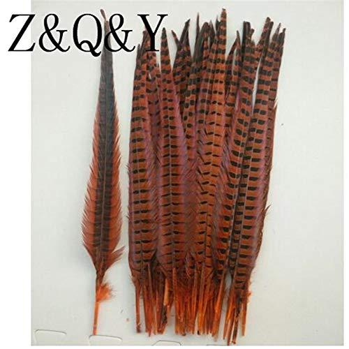 (Maslin Z & Q & Y Natural 50 Pheasant Tail 40-45CM (16-18 inches) Plush Dyed Orange DIY Feather Decoration Festive Prom Headwear)