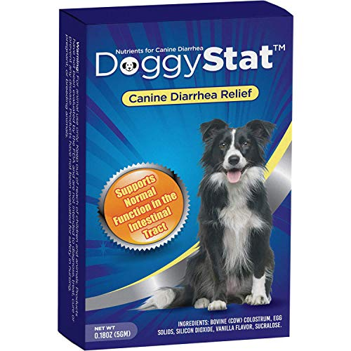 DoggyStat Fast Diarrhea Relief for Dogs That is Safe, Effective, and All-Natural, 5 Grams, Probiotic Style Supplement Veterinarian Tested