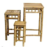 Metro Shop Set of 3 Nesting Bamboo End Tables (Vietnam)