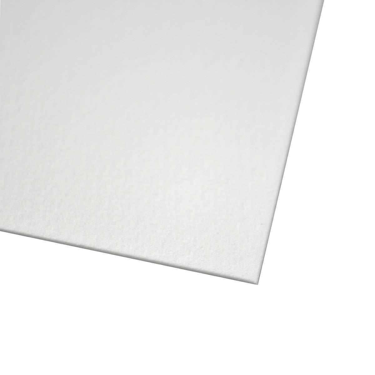 Bee Papier 100% Rag 140# Cold Press Lot de Feuilles de Papier Aquarelle, Blanc, 22' x 30' 10 Sheet Pack 22 x 30 10 Sheet Pack Bee Paper Company 1153P10-2230