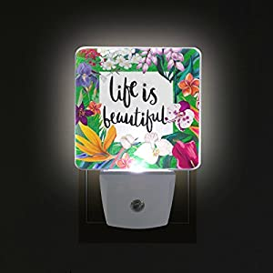 ALAZA LED Night Light With Smart Dusk To Dawn Sensor,Exotic Floral Frame Plug In Night Light Great For Bedroom Bathroom Hallway Stairways Or Any Dark Room