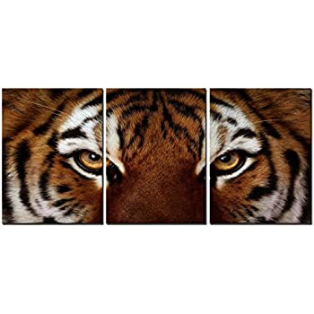 Natural art - Ferocity Tiger With Eye Staring Wall Art Painting Pictures Print On Canvas Animal The Picture For Home Modern Decoration