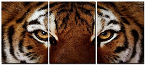 Natural art – Ferocity Tiger With Eye Staring Wall Art Painting Pictures Print On Canvas Animal The Picture For Home Modern Decoration Tiger Wall Art Painting