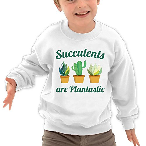 Price comparison product image Puppylol Succulents Are Plantastic Kids Classic Crew-neck Pullover Hoodie White 3 Toddler
