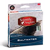 Best 3M Fly Lines - Scientific Anglers Mastery Saltwater Fly Line WF12F Review
