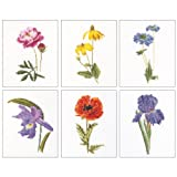 Thea Gouverneur 18 Count Counted Cross Stitch Kit, 6-3/4 by 8-Inch, Floral Studies 5 on Aida, Set of 6