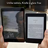 Kindle-Paperwhite-6-High-Resolution-Display-300-ppi-with-Built-in-Light-Wi-Fi-International-Version