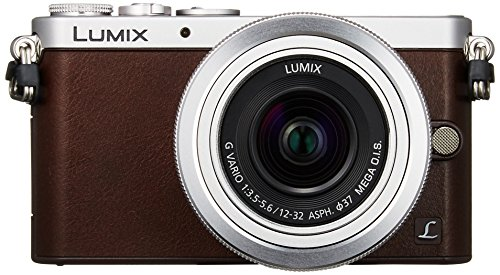 Panasonic Mirrorless interchangeable-lens camera GM1S Lens K