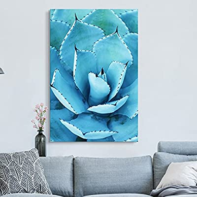 Closeup of a Blue Succulent Plant with Spikes 32x48