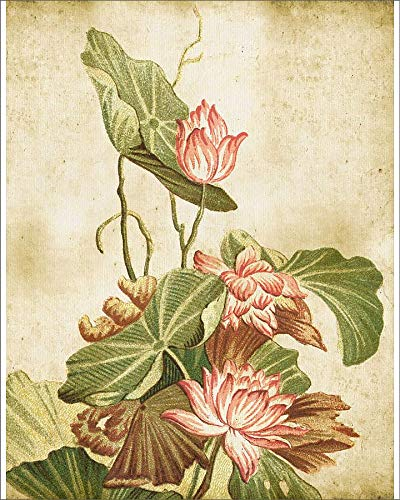 Media Storehouse 20x16 Print of Old Dirty Chinese Wallpaper ()