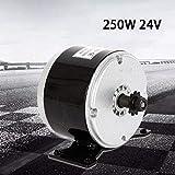 DYRABREST 24V 250W Electric Motor DC 2750RPM