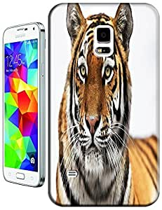 Tiger Case Cover Hard Back Cases Beautiful Nice Cute Animal hot selling cell phone cases for Samsung Galaxy S5 i9600 # 10