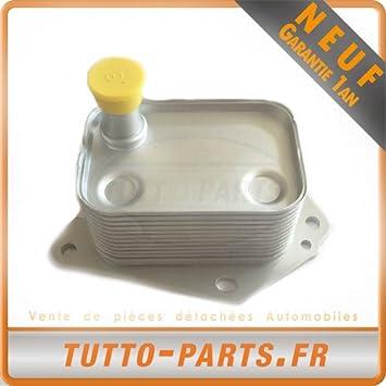 Radiador Enfriador de aceite Hyundai i40 Kia Rio: Amazon.es: Coche y ...