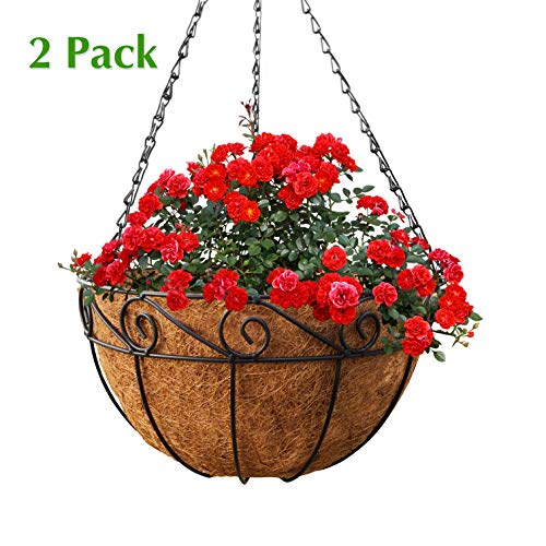 GrayBunny GB-6907A2 2 Pack, Metal Hanging Planter Basket with Coco Liner, 14 in Diameter, Hanging Flower Pot, Round Wire Plant Holder, Watering Basket, Chain Porch Decor, For Lawn, Patio, Garden, Deck