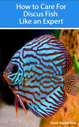 - How to Care for Discus Fish Like an Expert (Aquarium and Turtle Mastery Book 3)