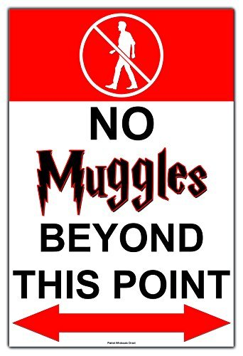 no muggles beyond this point poster