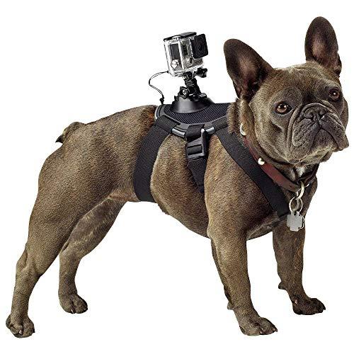GoPro Fetch Dog Harness