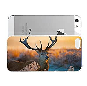 iPhone 5&5S cover case Animals Deer Horns Field Sunset