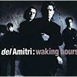 Waking Hours by Del Amitri (2007-12-21)