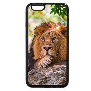 iPhone 6S Plus Case, iPhone 6 Plus Case, Taking rest