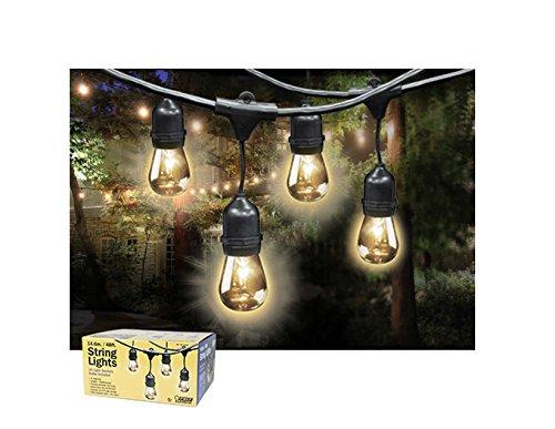 Feit Outdoor Weatherproof String Light Set, Black, 48 ft, 24 Light Sockets, Includes 36 Bulbs (Set The Light)