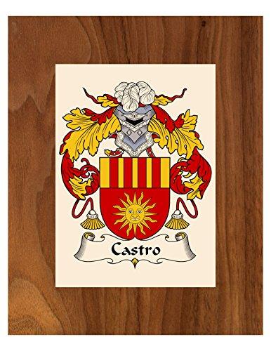 Carpe Diem Designs Castro Coat of Arms/Castro Family Crest 8X10 Photo Plaque, Personalized Gift, Wedding Gift