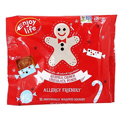 (Enjoy Life Foods - Holiday Rice Milk Crunch Chocolate Squares - 6.3 oz.)