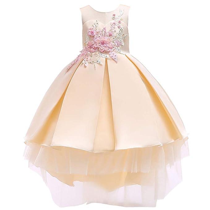 Vestido de niña,ZARLLE Falda Vestido de Ceremonia Bautizo para Bebés Niñas Vestido para Boda Fiesta de Encaje Floral sin Mangas de Encaje Gasa Falda Tutú: ...