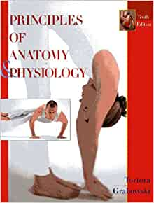 principles of anatomy and physiology 10th edition pdf